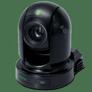 Birddog Camera